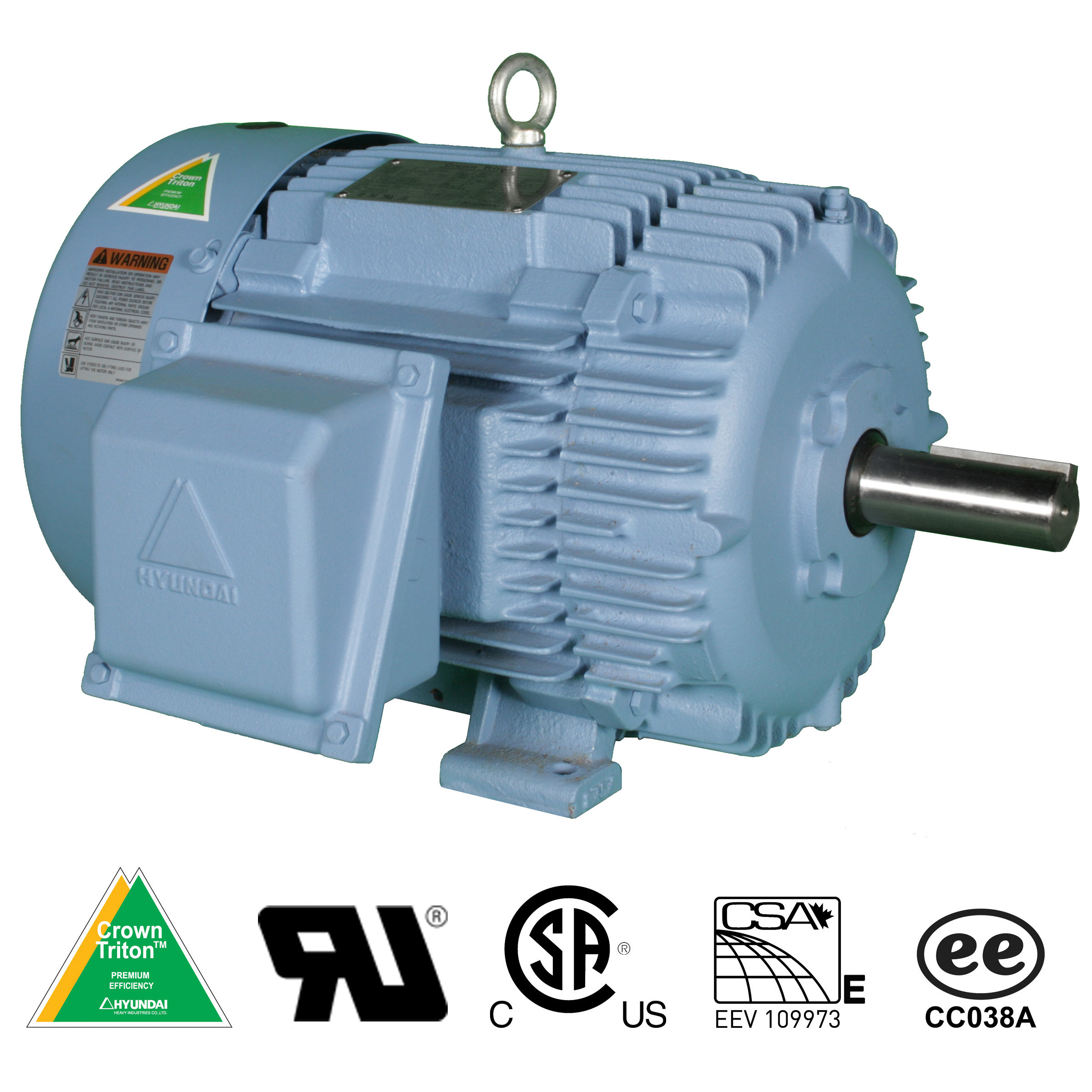 Hyundai Crown Triton Series Electric Motors | Rainbow Precision Products